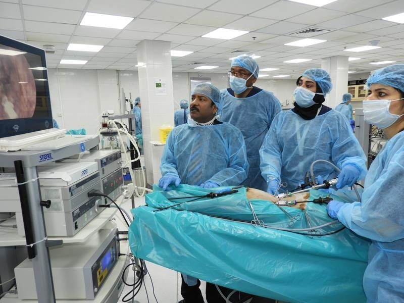 Surgeons & Gynecologist Performing on the Live Tissue Fundoplication, Nephrectomy and Rectopexy, Laparoscopic Burch Colposuspension for stress urinary incontinence and Sacrohysteropexy for uterine prolapse