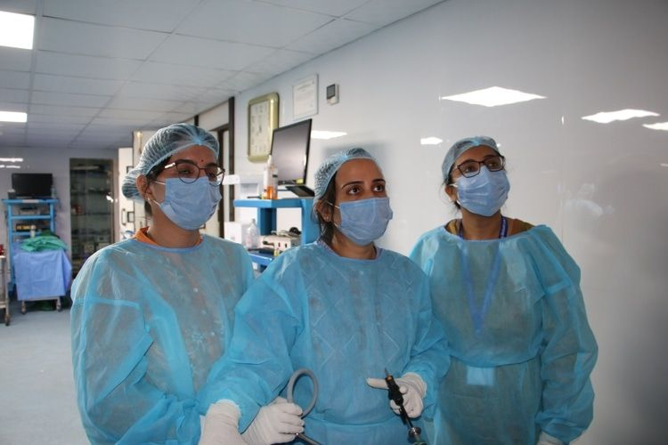 Gynecologists  Practcing Laparoscopic Tubal Recanalization Surgery on the Live Tissue.