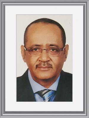Dr. Abdelrahman Abdelkarim Elwasila