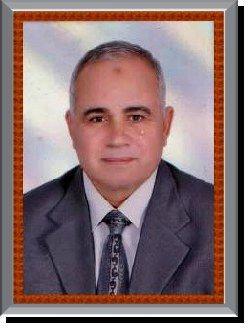 Dr. Mohamed El-Sayed Ibrahim Hassan