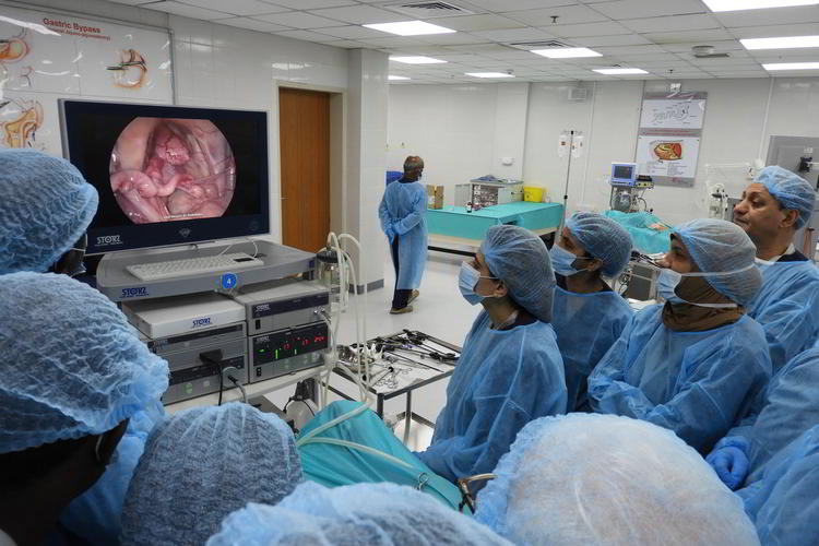 World Laparoscopy Training Institute, USA