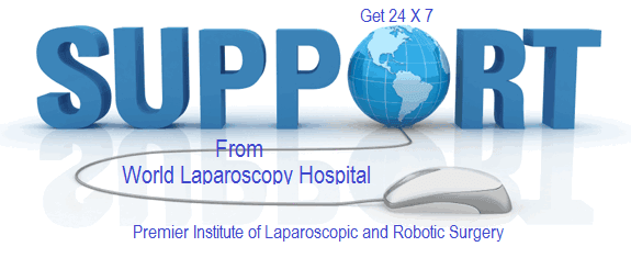 Support from World Laparoscopy Hospital