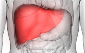 Laparoscopic Liver Transplant Procedure to become Standard