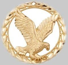 Dr. R. K. Mishra Received Spanish Golden Eagle Award